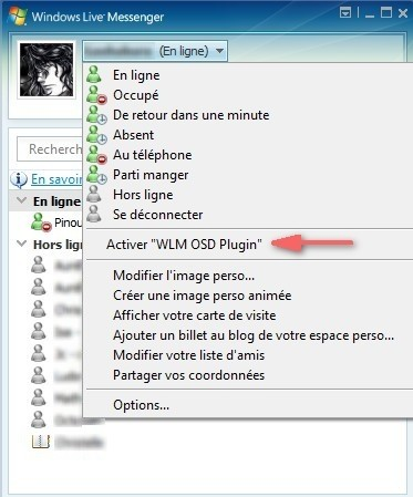 Activation du plugin